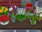 flower set sims 4 by dara savelly