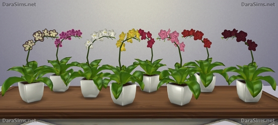 orchid sims 4