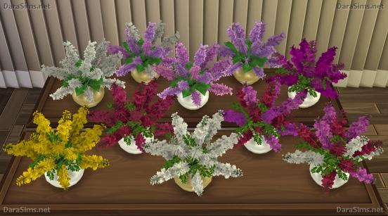delphinium recolors